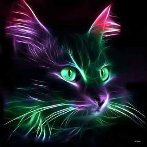 images  neon animals  pinterest