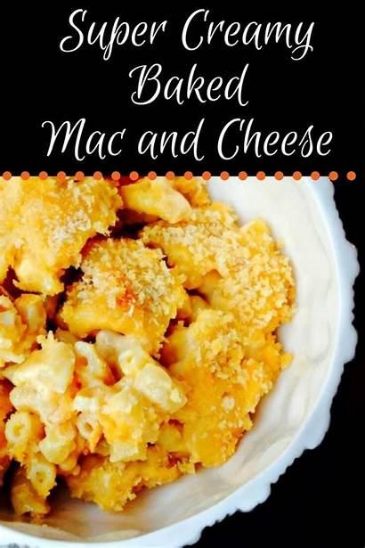 Cheese Creamy Baked Mac Super Recipe Recipes