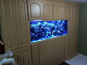 Custom Fish Tanks - Ocean View Aquariums Miami
