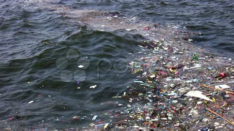 water pollution full hd p stock video  hd