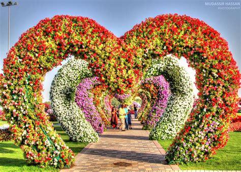Garden Decoration Dubai by All Sizes Dubai Miracle Garden Flickr Photo