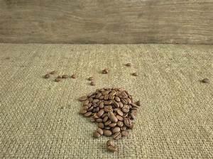 Gunny background stock image. Image of rural, matting ...