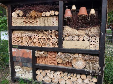 warum sind die insektenhotels so vereinsahmt aschersleben myheimat de
