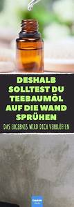 Schimmel Von Wand Entfernen : teebaum l als allesk nner darum hilft es auch im kampf gegen schimmel schimmel entfernen ~ A.2002-acura-tl-radio.info Haus und Dekorationen
