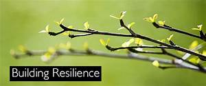 Building Resilience - Roffey Park | We develop people who ...
