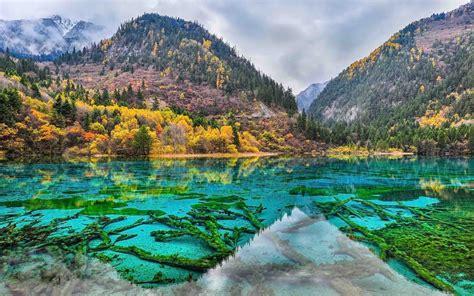 jiuzhaigou park china  flower lake unesco world