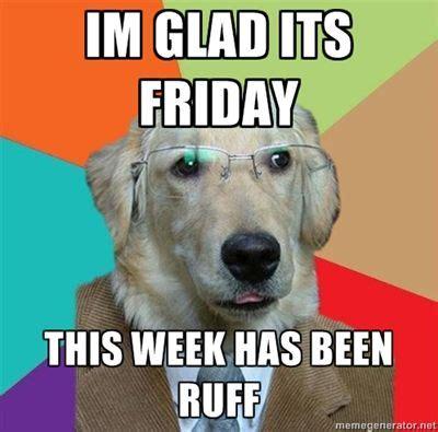 Happy Friday Meme Funny - happy friday friday smallbusiness dog meme funny bone pinterest happy meme and dogs