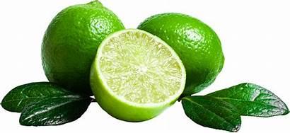 Lime Fruit Transparent Clipart Slice Purepng Citrus