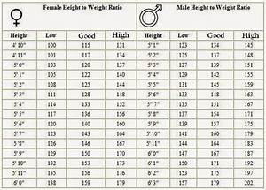 Usmc Weight Standards 2018 Blog Dandk