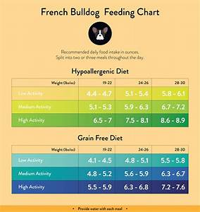 French Bulldog Weight Chart Dogs Breeds And Everything