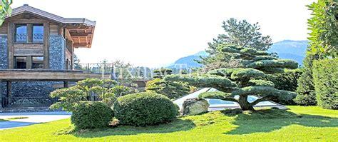 sichtschutz aus pflanzen f 252 r garten terrasse 187 luxurytrees 174
