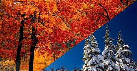 Diferencia entre colores cálidos y fríos Diferenciador