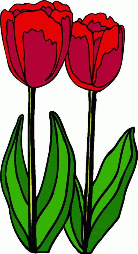 rote tulpen ausmalbild malvorlage haushalt