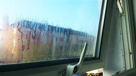 stop condensation  windows  walls  diy doctors
