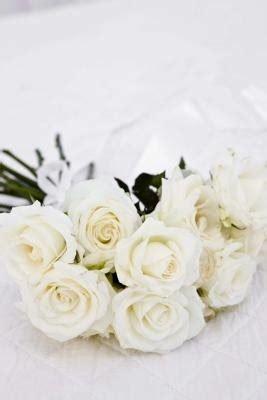 cauterize roses ehow