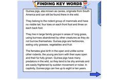 Identifying Key Words To Put On Your Resume by Help Your Students Understand How Noun Groups Can Enrich The Meaning Of Sentences This Iwb