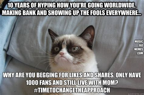 8 Angry Cat Memes Very Funny 2013 Funny