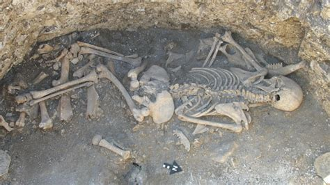 sacrifice of a witch iron age in britain yield hybrid animals and human