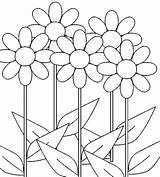 Coloring Daisy Flower Flowers Bunga Gambar Putih Hitam Growing Sketsa Colouring Daisies Printable Sunflowers Rocks Mewarnai Sederhana Lima Drawing Untuk sketch template