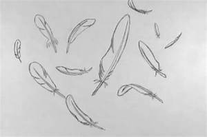 Feather Falling (Hand-drawn) on Vimeo