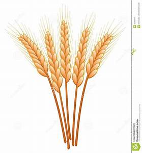 wheat painting | Go Back > Pix For > Wheat Plant Clip Art ...
