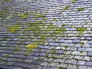 Demoussage toiture avec le mosskade 100% naturel et sans