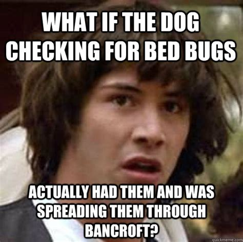 Bed Bug Meme - what if the dog checking for bed bugs actually had them and was spreading them through bancroft