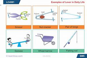 Learnhive | CBSE Grade 5 Science Simple Machines - lessons ...