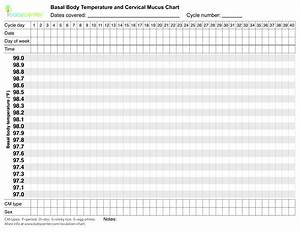 Sample Body Chart
