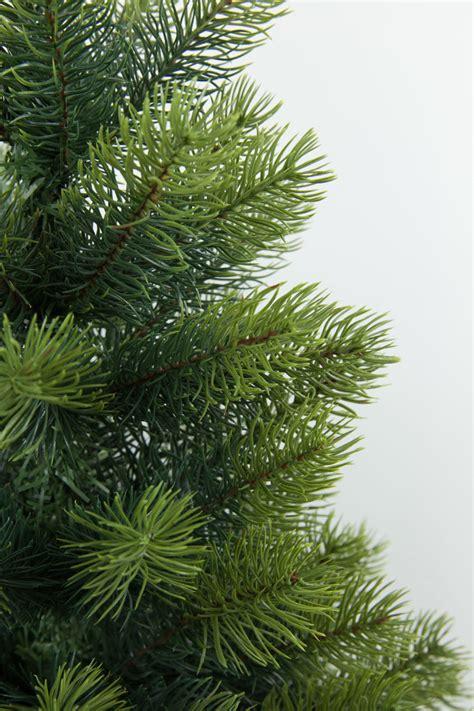 top 28 luxus weihnachtsbaum weihnachtsb 228 ume
