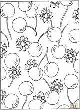 Coloring Pages Cherries Flowers Pattern Cherry Printable Blossom Flower Sheets Colouring Patterns Printables Adult Hearts Designs Popular Colorings Colors sketch template
