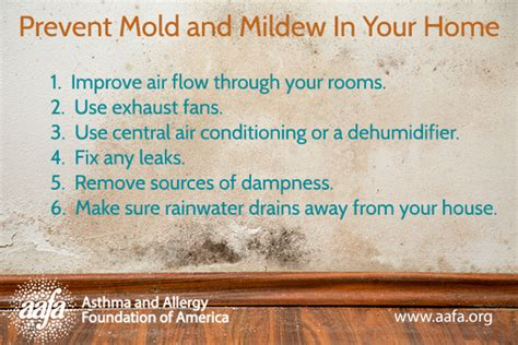 how to prevent mildew mold allergy symptoms prevention and treatment aafa org