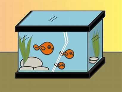 Draw Drawing Easy Fish Tank Cuboid Fishtank