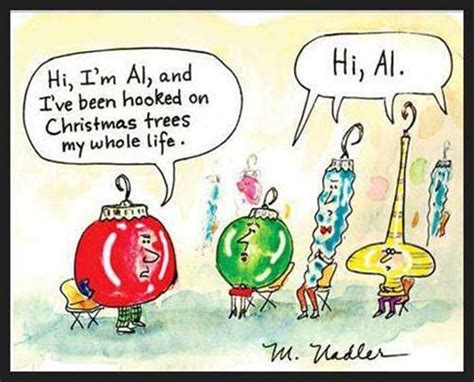 funny christmas ornaments christmas pictures dump a day