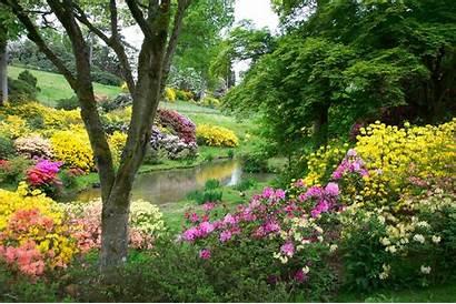 Gardens Leonardslee Sussex Flowers Park Horsham Garden