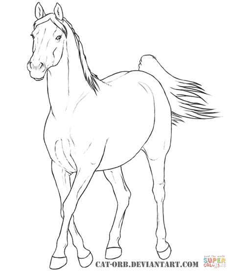 Kleurplaat Horses by Arabian Mare Coloring Page Free Printable Coloring Pages