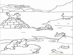 polar animal coloring pages - antarctic sea creatures free coloring pages