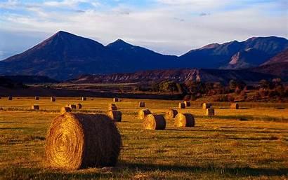 Autumn Harvest Wallpapers 1920 1200 Landscape Hay