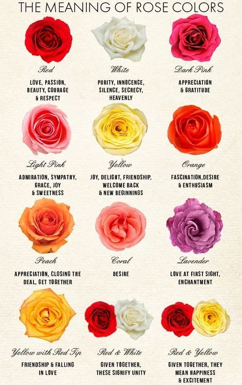 the meaning of colors planting flowers