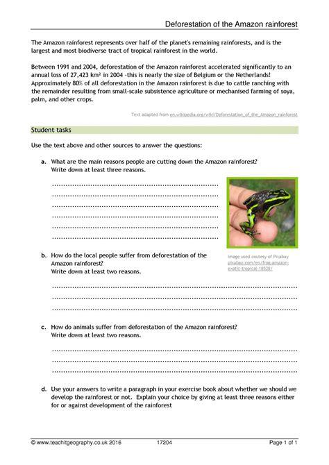 worksheet rainforest worksheets grass fedjp worksheet
