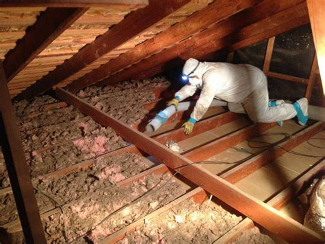 remove insulation   attic home efficiency