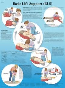 BLS Basic Life Support Chart