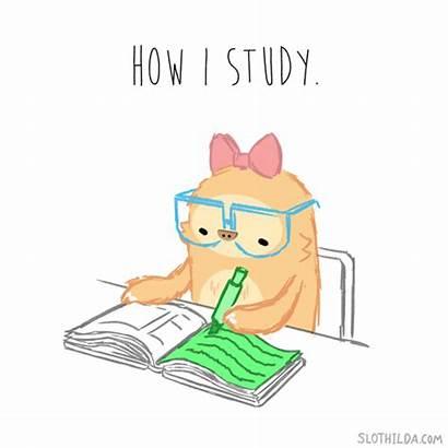 Studying Study Animated Reading Kawaii Animation Homework