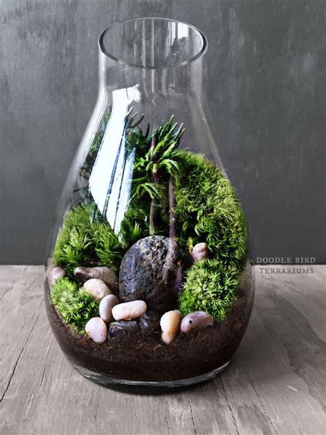 decor fond terrarium desertique 616 best terrariums and miniature gardening images on moss garden plants and terrariums