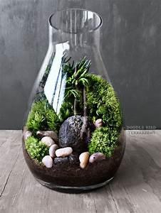 Acheter Terrarium Plante : 3136 best images about terrariums succulents on pinterest terrarium ideas glass terrarium ~ Teatrodelosmanantiales.com Idées de Décoration