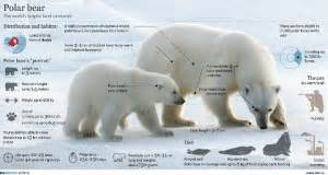 infographics arctic education outreach programs