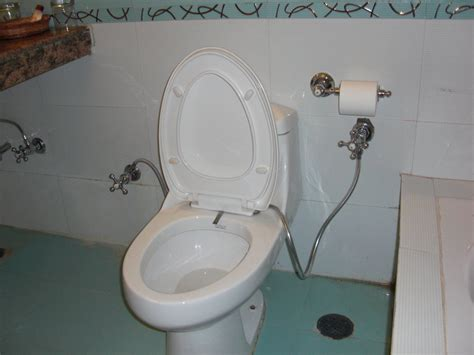 Combined Toilet And Bidet System by Bidet Toilet Seats The New Cafe Paulding