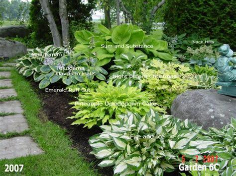 hosta garden designs garden ideas and garden design