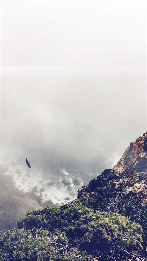 mountain bird cliff animal fog cloud flare android