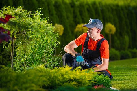 Natural Diy Pest Control Measures For Your Garden